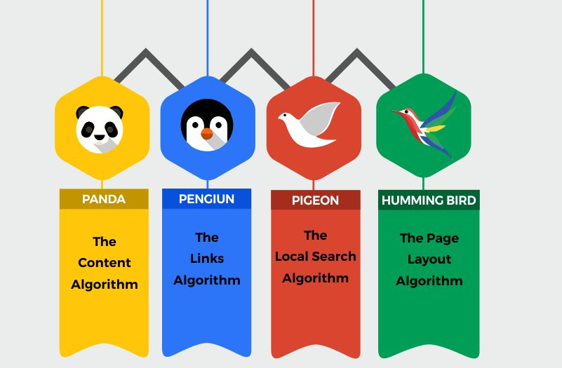 Search Engine Algorithm update